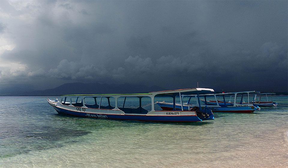 2-1-Bali-Nature-Gili-RandPaadiga