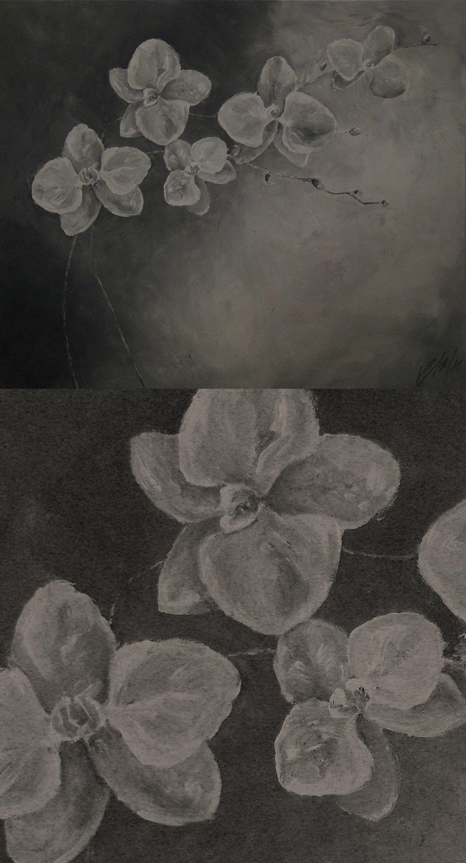 2011-maal-orhidee