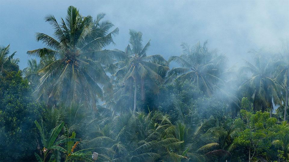 3-1-Bali-Nature-Bratan