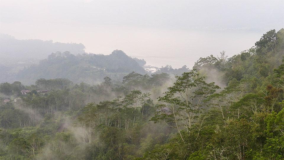 3-4-Bali-Nature-Bratan