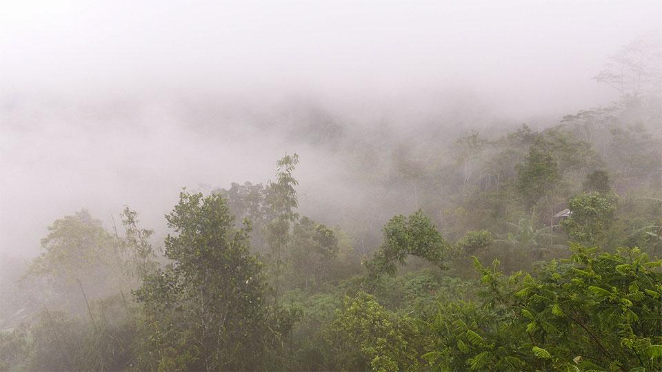 3-5-Bali-Nature-Bratan