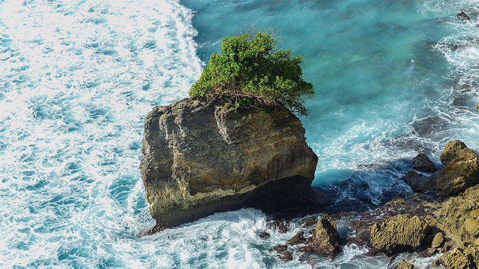 4-1-Bali-Nature-LonelyRock