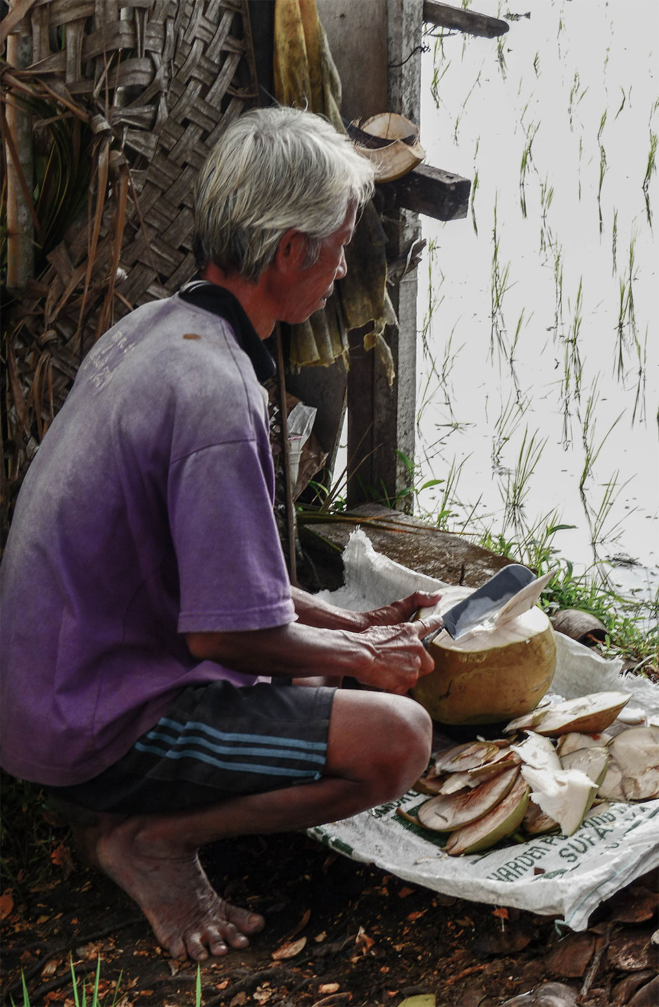 4-7-Bali-Working-Coconut