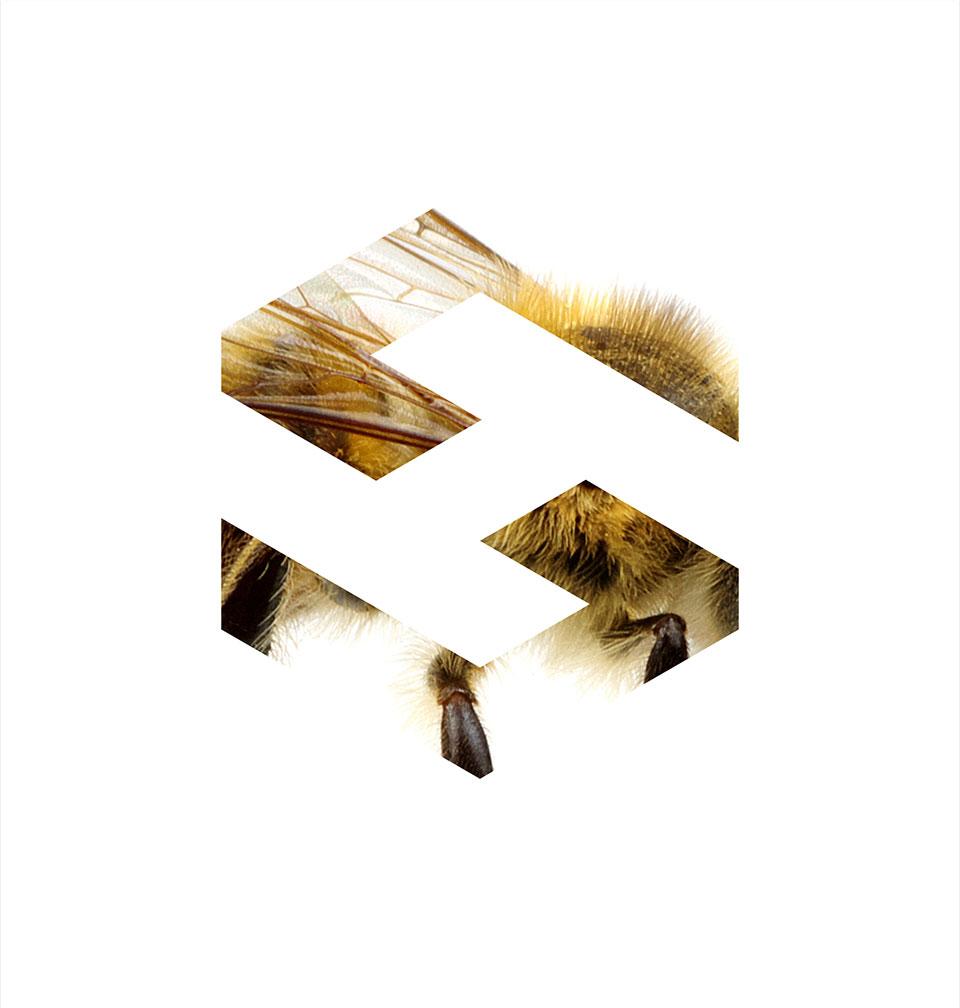 Hivescale-logo-1