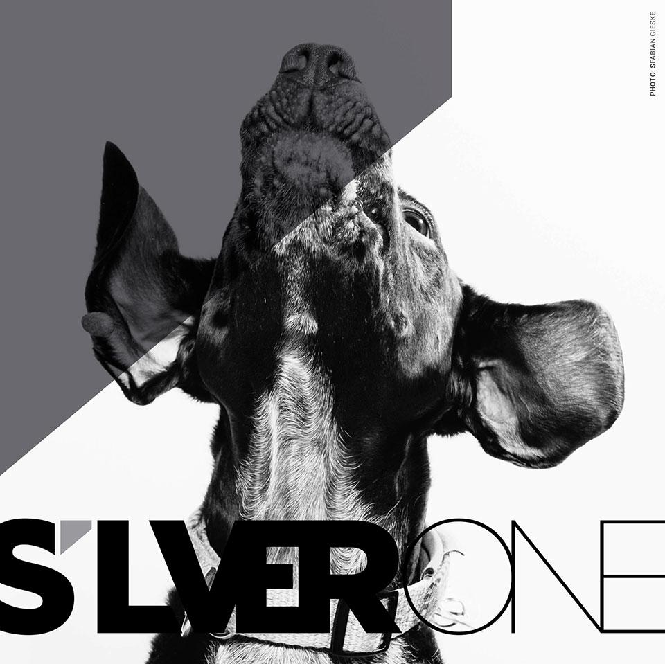 Silverone-logokavandid-5